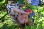Фотосъемка Fruit kids - Lipetsk.Ru